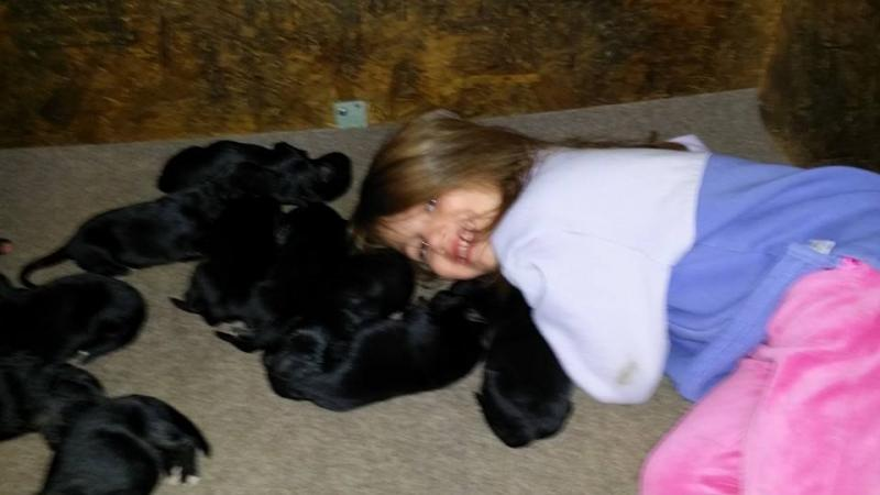 My grandbaby in love with these puppies