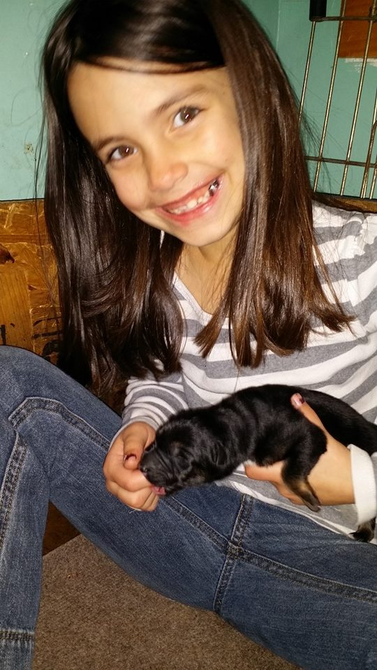 puppy sucking on my grand daughters finger