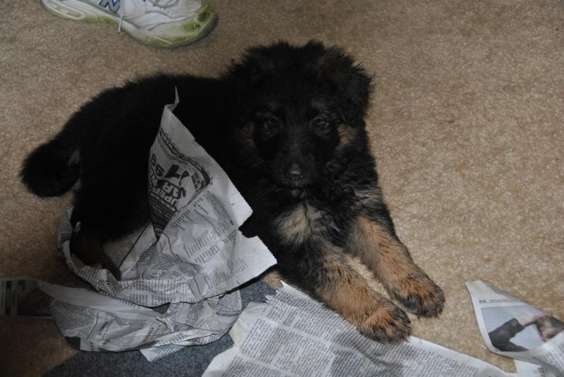 Look how big I'm getting