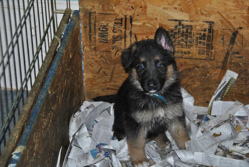 Look mom, I'm becoming a grown-up!