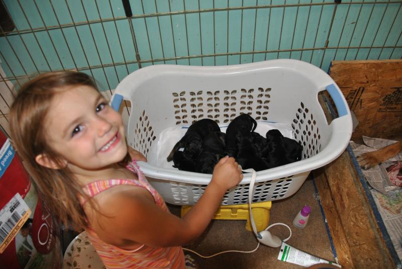 My grand daughter being the lil helper