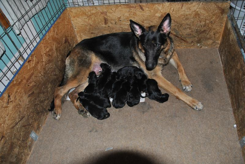 Nina is a very good mom