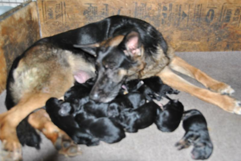 Nina one of the very best mommies