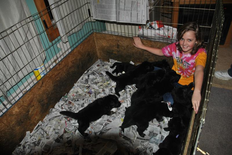 My niece is in love with these babies