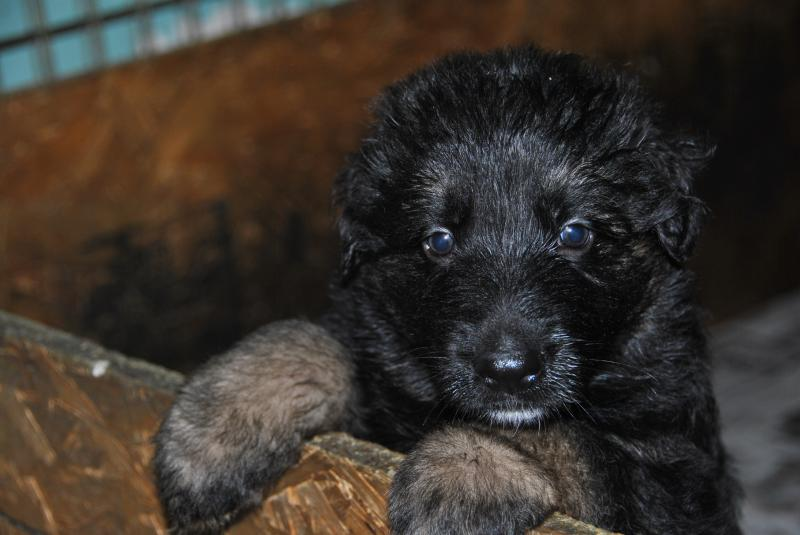 All of them so personal
