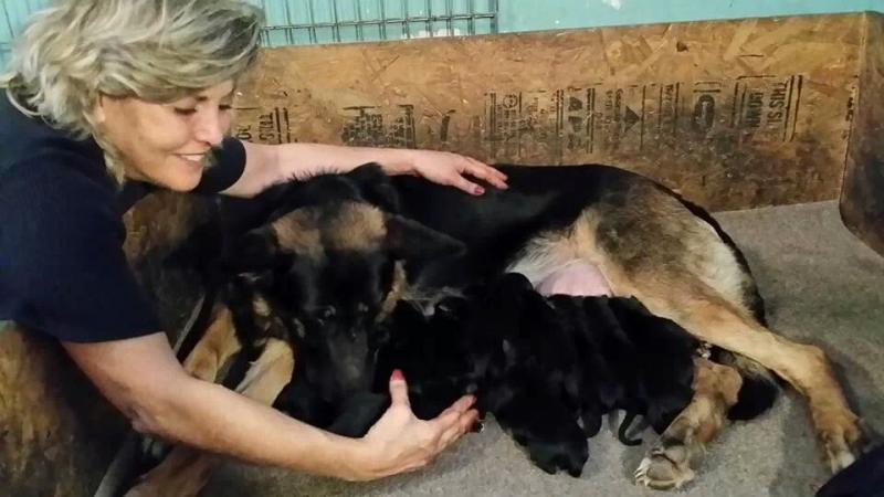 Nina and I both are thrilled everyone is healthy