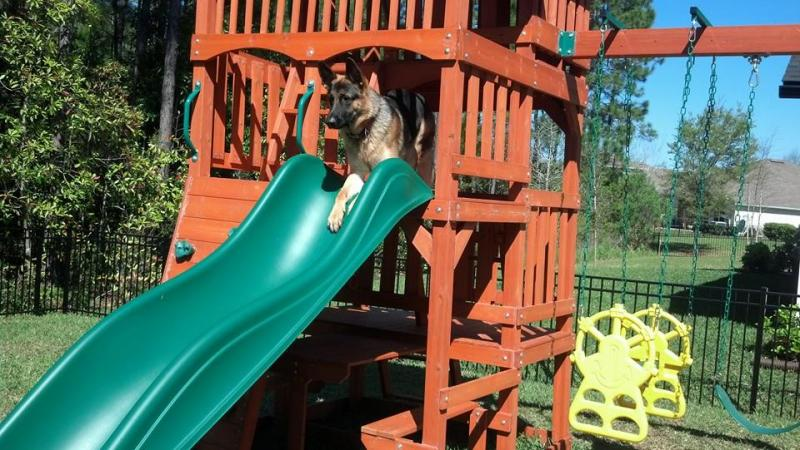 Ace and Nina's son 7 months old