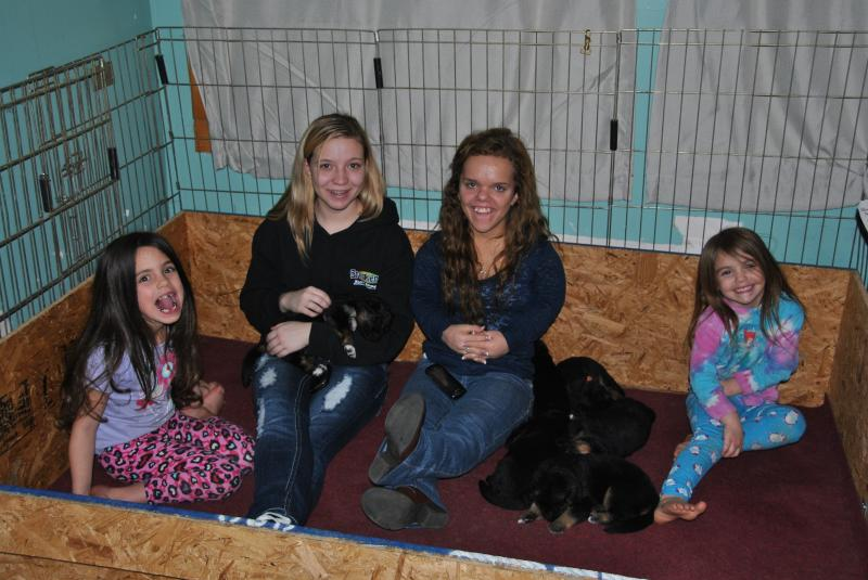 All the children help with making sure all puppies have no fear of people