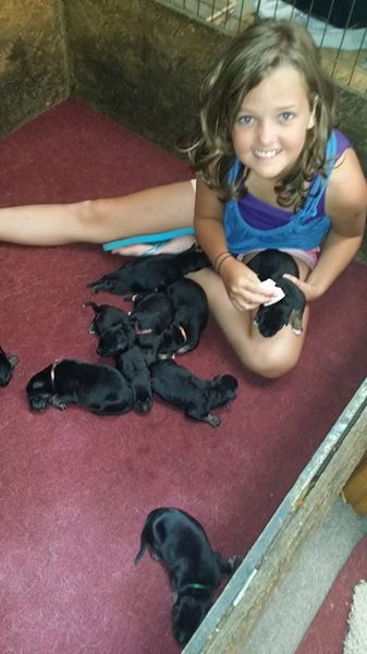 My niece is my big hepler