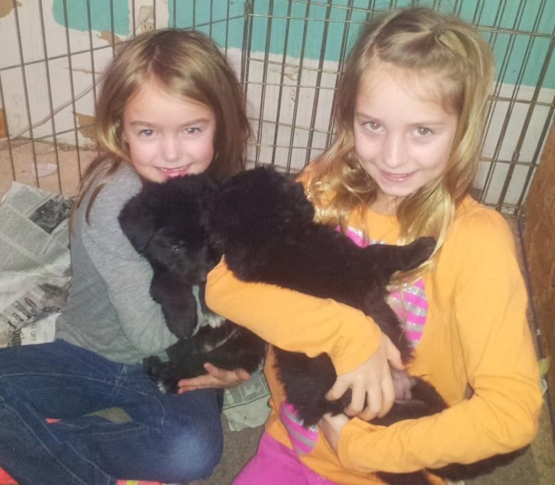 These girls I know will love their puppy