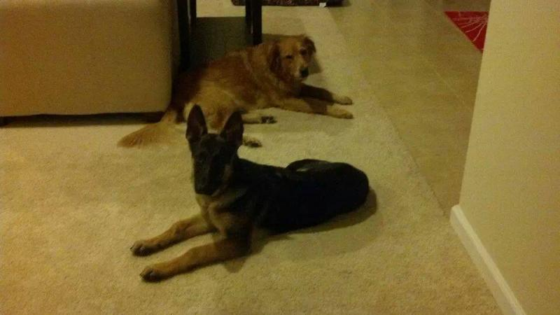 They are best friends